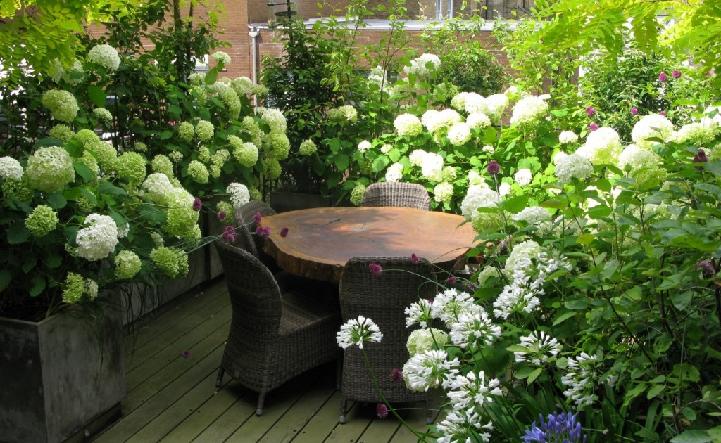 The London Gardener Garden Design Services South West London
