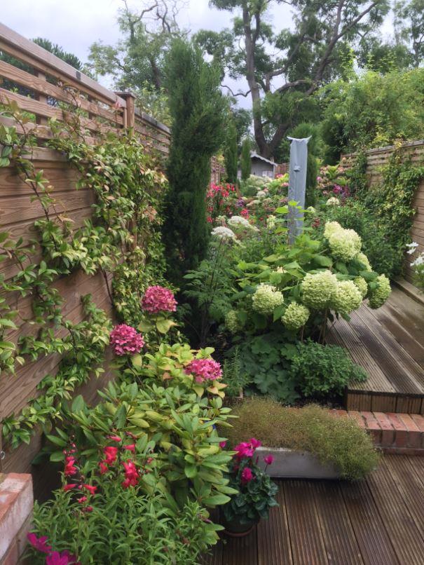 modern-garden-1